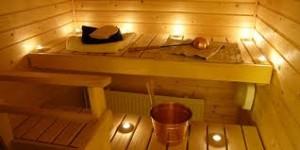Выбираем материал для постройки бани